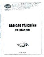 Báo cáo tài chính quý 3 năm 2013 - Công ty Cổ phần Chế biến Hàng xuất khẩu Long An