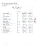 Báo cáo tài chính hợp nhất quý 4 năm 2013 - Công ty Cổ phần Tập đoàn Thủy sản Minh Phú