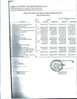 Báo cáo KQKD công ty mẹ quý 3 năm 2010 - Công ty Cổ phần Tập đoàn Hoàng Long