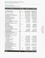 Báo cáo tài chính quý 3 năm 2010 - Công ty Cổ phần Chứng khoán Kim Long