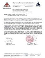 Báo cáo KQKD hợp nhất quý 2 năm 2010 (đã kiểm toán) - Công ty Cổ phần Hóa - Dược phẩm MEKOPHAR