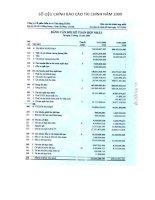 Báo cáo tài chính hợp nhất năm 2009 - Công ty cổ phần Đầu tư và Xây dựng HUD3