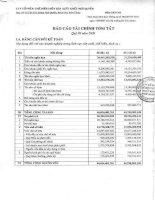Báo cáo tài chính quý 3 năm 2009 - Công ty Cổ phần Chế biến Thủy sản Xuất khẩu Ngô Quyền