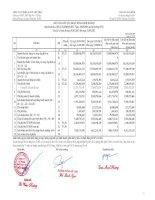 Báo cáo KQKD quý 1 năm 2013 - Công ty cổ phần Thiết bị Y tế Việt Nhật