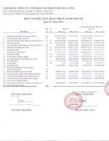 Báo cáo tài chính công ty mẹ quý 4 năm 2011 - Công ty Cổ phần Tập đoàn Hoàng Long