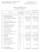 Báo cáo tài chính quý 1 năm 2010 - Công ty Cổ phần Đầu tư - Kinh doanh nhà