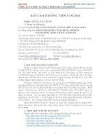 Báo cáo thường niên năm 2012 - Công ty Cổ phần Đầu tư phát triển hạ tầng IDICO
