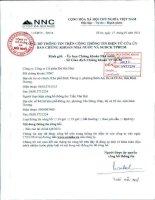 Báo cáo tài chính quý 4 năm 2013 - Công ty Cổ phần Đá Núi Nhỏ