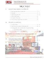 Báo cáo thường niên năm 2011 - Công ty Cổ phần Minh Hữu Liên
