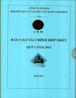 Báo cáo tài chính hợp nhất quý 1 năm 2012 - Công ty Cổ phần Khoáng sản và Vật liệu xây dựng Lâm Đồng