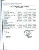 Báo cáo KQKD công ty mẹ quý 4 năm 2010 - Công ty Cổ phần Tập đoàn Hoàng Long