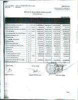 Báo cáo KQKD công ty mẹ quý 2 năm 2011 - Công ty Cổ phần Hữu Liên Á Châu