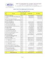 Báo cáo tài chính quý 2 năm 2011 - Công ty Cổ phần Hợp tác Lao động với Nước ngoài