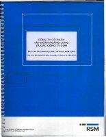 Báo cáo tài chính hợp nhất năm 2015 (đã kiểm toán) - Công ty Cổ phần Tập đoàn Hoàng Long