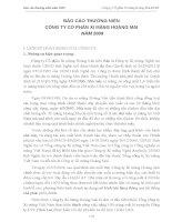 Báo cáo thường niên năm 2009 - Công ty cổ phần Xi măng VICEM Hoàng Mai