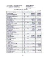 Báo cáo tài chính quý 2 năm 2011 - Công ty Cổ phần Bột giặt Net