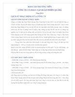 Báo cáo thường niên năm 2010 - Công ty cổ phần Tập đoàn Thiên Quang