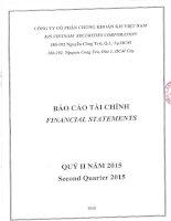 Báo cáo tài chính quý 2 năm 2015 - Công ty Cổ phần Chứng khoán KIS Việt Nam