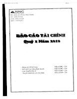 Báo cáo tài chính quý 1 năm 2010 - Công ty Cổ phần Đá Núi Nhỏ