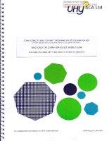 Báo cáo tài chính năm 2015 (đã kiểm toán) - Tổng Công ty Đầu tư Phát triển Nhà và Đô thị Nam Hà Nội