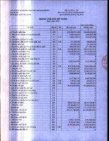 Báo cáo tài chính quý 4 năm 2010 - Công ty Cổ phần Đầu tư Thương mại Thủy Sản