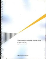 Báo cáo tài chính công ty mẹ năm 2011 (đã kiểm toán) - Tổng Công ty Phát triển Đô thị Kinh Bắc-CTCP