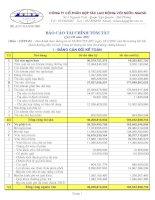 Báo cáo tài chính quý 3 năm 2007 - Công ty Cổ phần Hợp tác Lao động với Nước ngoài