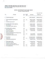 Báo cáo tài chính hợp nhất quý 1 năm 2013 - Công ty Cổ phần Tập đoàn Thủy sản Minh Phú