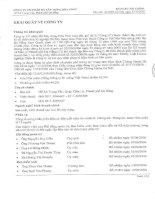 Báo cáo tài chính năm 2007 - Công ty Cổ phần Đá Xây dựng Hoà Phát