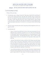 Báo cáo thường niên năm 2008 - Công ty Cổ phần Thủy điện Nậm Mu