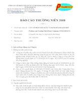 Báo cáo thường niên năm 2008 - Công ty Cổ phần Sản xuất và Kinh doanh Kim khí