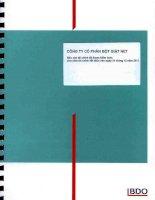 Báo cáo tài chính năm 2011 (đã kiểm toán) - Công ty Cổ phần Bột giặt Net