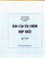 Báo cáo tài chính hợp nhất quý 2 năm 2013 - Công ty Cổ phần Điện lực Khánh Hòa