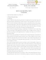Báo cáo thường niên năm 2013 - Công ty Cổ phần Xây dựng Sông Hồng