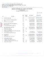 Báo cáo tài chính hợp nhất quý 2 năm 2011 - Công ty Cổ phần Tập đoàn Thủy sản Minh Phú
