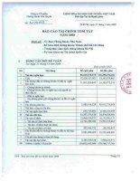 Báo cáo tài chính năm 2008 - Công ty Cổ phần Chứng khoán KIS Việt Nam