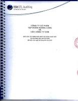 Báo cáo tài chính hợp nhất quý 2 năm 2014 (đã soát xét) - Công ty Cổ phần Tập đoàn Hoàng Long