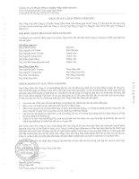 Báo cáo tài chính hợp nhất quý 2 năm 2014 - Công ty Cổ phần Nhựa Thiếu niên Tiền Phong