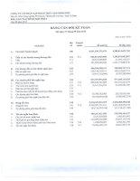 Báo cáo tài chính hợp nhất quý 3 năm 2013 - Công ty Cổ phần Tập đoàn Thủy sản Minh Phú