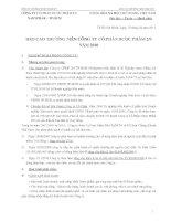 Báo cáo thường niên năm 2010 - CTCP Dược phẩm 2-9 TP. Hồ Chí Minh
