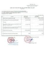 Báo cáo tài chính quý 1 năm 2013 - Quỹ đầu tư tăng trưởng Manulife
