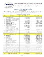 Báo cáo tài chính quý 2 năm 2008 - Công ty Cổ phần Hợp tác Lao động với Nước ngoài