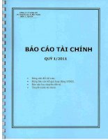 Báo cáo tài chính công ty mẹ quý 1 năm 2011 - Công ty Cổ phần Tập đoàn Kido
