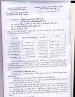 Báo cáo tài chính quý 1 năm 2015 - Công ty cổ phần Supe Phốt phát và Hóa chất Lâm Thao