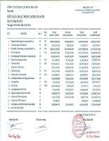 Báo cáo KQKD hợp nhất quý 2 năm 2011 - Công ty Cổ phần Tập đoàn Hoa Sen
