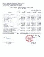 Báo cáo tài chính công ty mẹ quý 3 năm 2010 - Công ty Cổ phần Tập đoàn Hoàng Long