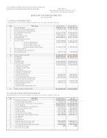 Báo cáo tài chính tóm tắt quý 2 năm 2009 - Công ty Cổ phần Chế biến Thủy sản Xuất khẩu Ngô Quyền