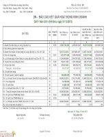 Báo cáo tài chính công ty mẹ quý 4 năm 2013 - Công ty Cổ phần Phát triển Hạ tầng Vĩnh Phúc