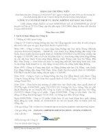 Báo cáo thường niên năm 2010 - Công ty cổ phần Dịch vụ Hàng không Sân bay Đà Nẵng