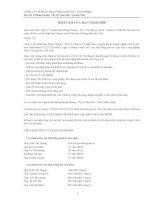 Báo cáo tài chính quý 2 năm 2011 (đã soát xét) - Công ty cổ phần Than Mông Dương - Vinacomin